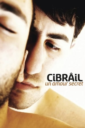 Image Cibrâil : Un amour secret