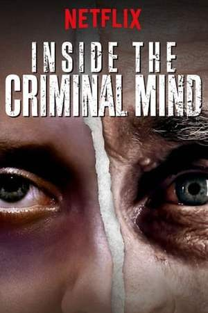 Image Inside the Criminal Mind