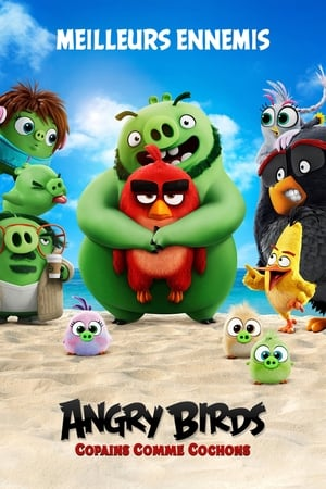Image Angry Birds : Copains comme cochons