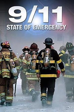 Image 9/11 State of Emergency