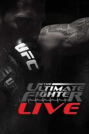 Image The Ultimate Fighter