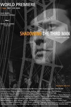 Image Shadowing the Third Man