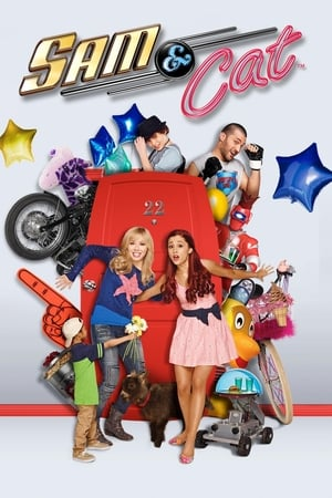 Image Sam & Cat