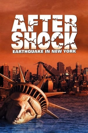 Image Aftershock: Earthquake in New York