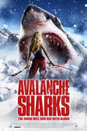 Image Avalanche Sharks