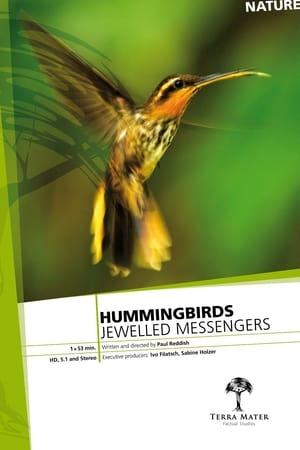 Image Hummingbirds: Jewelled Messengers