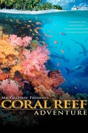Image Coral Reef Adventure