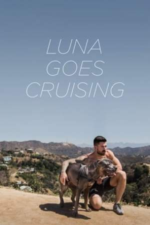 Poster Luna Goes Cruising 2015