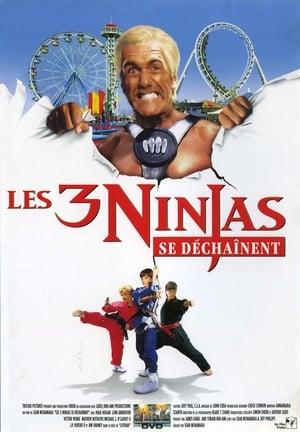 Ninja Kids : Les 3 Ninjas Se Déchaînent