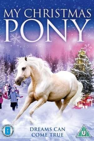 Image My Christmas Pony