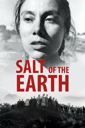 Image Salt of the Earth