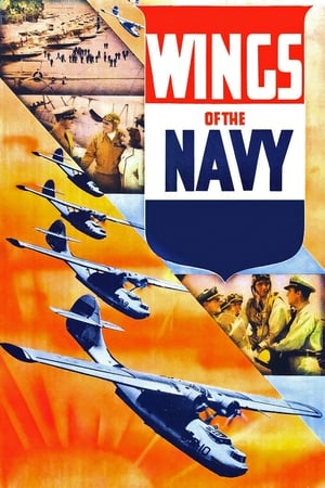 Image Wings of the Navy