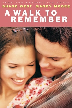 Poster A Walk to Remember 2002