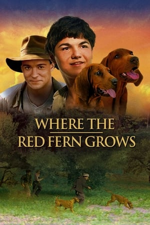 Image Where the Red Fern Grows