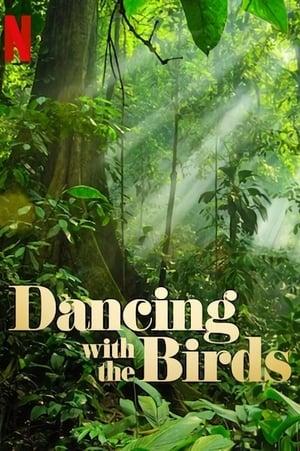 Ver Online Bailando con los Pájaros