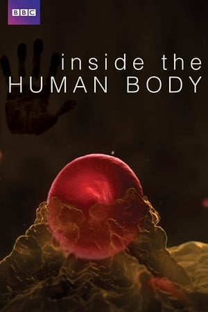 Image Inside the Human Body