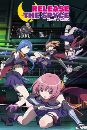 Image RELEASE THE SPYCE