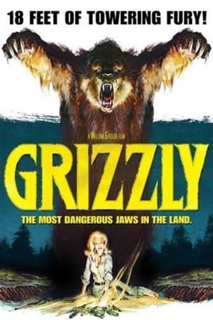 Image Grizzly