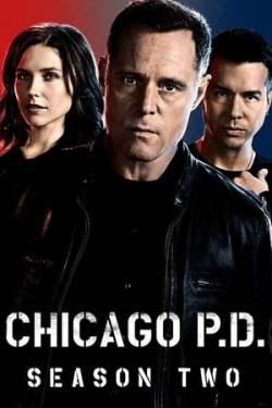 Baixar Serie Chicago P.D. 2ª Temporada Completa (2014) Bluray 720p Dual Audio via Torrent
