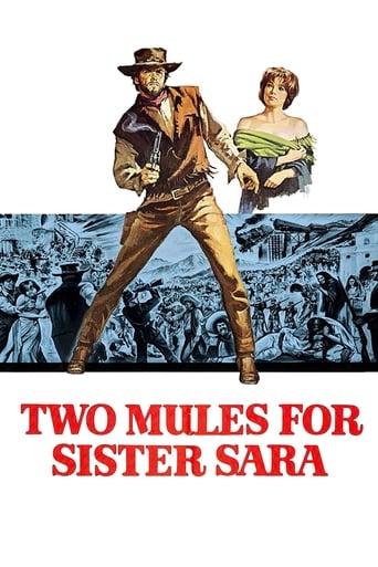 Sara'ya İki Katır