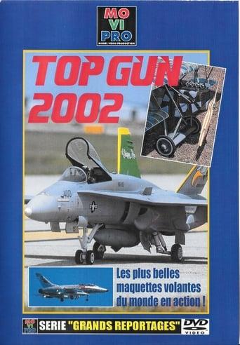 TOP GUN 2002