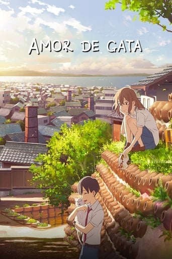 Watch Amor de gata Full Movie Online Free HD 4K
