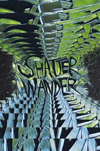 Shatter Wander