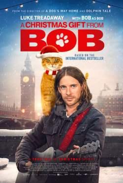 Um Presente Do Bob Torrent (2020) Legendado WEB-DL 1080p – Download