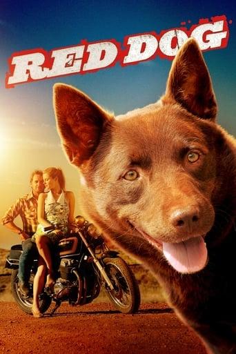 Червеното куче