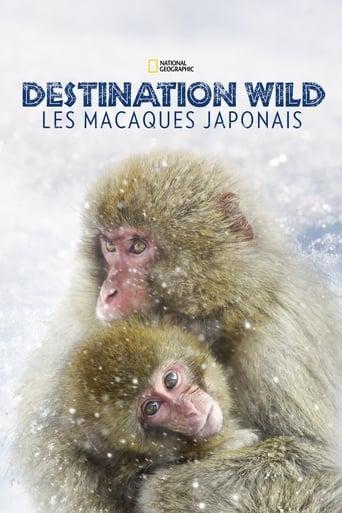 Destination Wild: Les macaques japonais