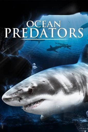 Prédateurs de l'océan