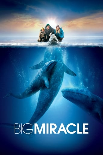 Watch Big Miracle Online