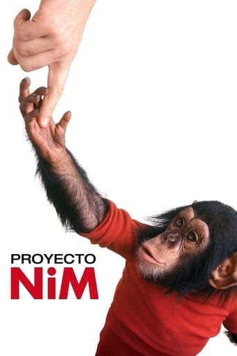 Le Projet Nim