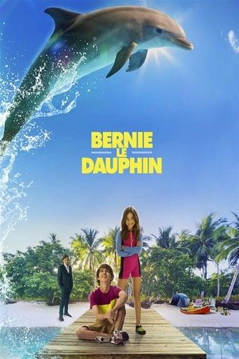 Bernie le dauphin