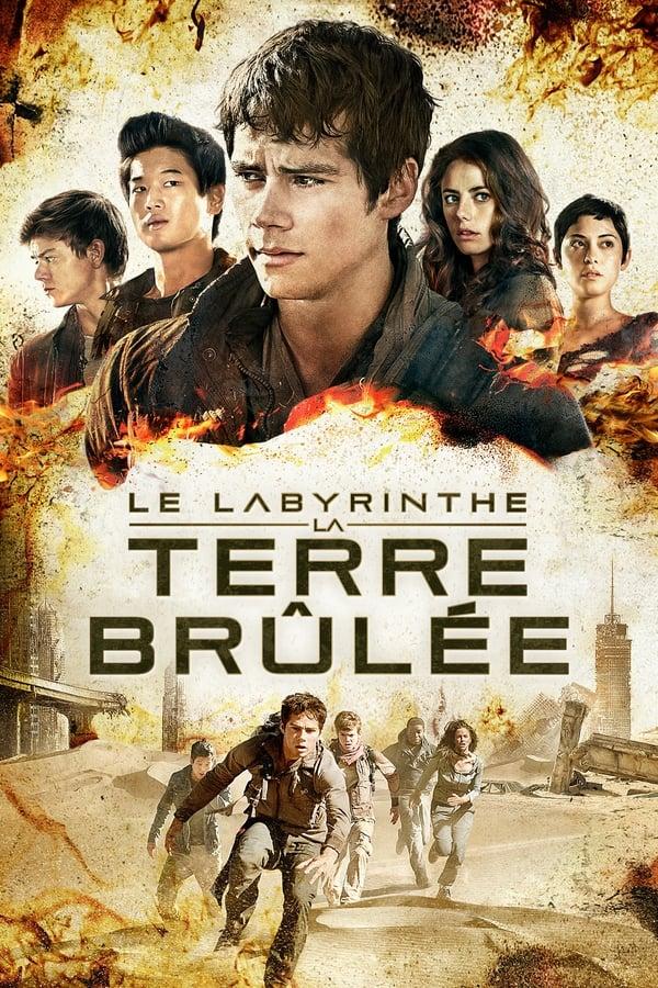 Le Labyrinthe 1 Film Complet En Francais : labyrinthe, complet, francais, RZB(BD-1080p)*, Labyrinthe, Terre, Brûlée, Streaming, Français, JFVQ3QRXfu