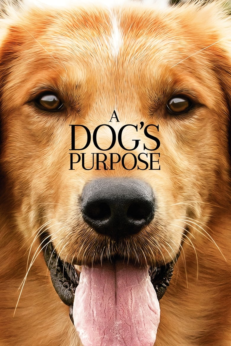 Dog S Purpose Movie Online