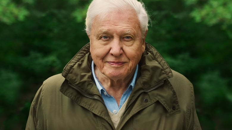 Watch David Attenborough: A Life On Our Planet Full Movie HD Online Free