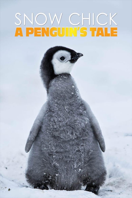 Snow Chick - A Penguin's Tale