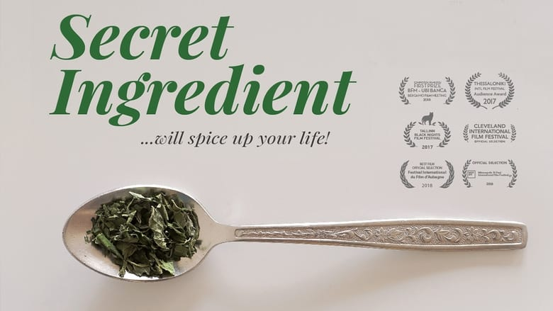 Watch Secret Ingredient Full Movie HD Online Free