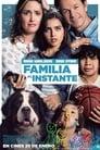 Ver Familia al Instante (2018) / Instant Family (2018)