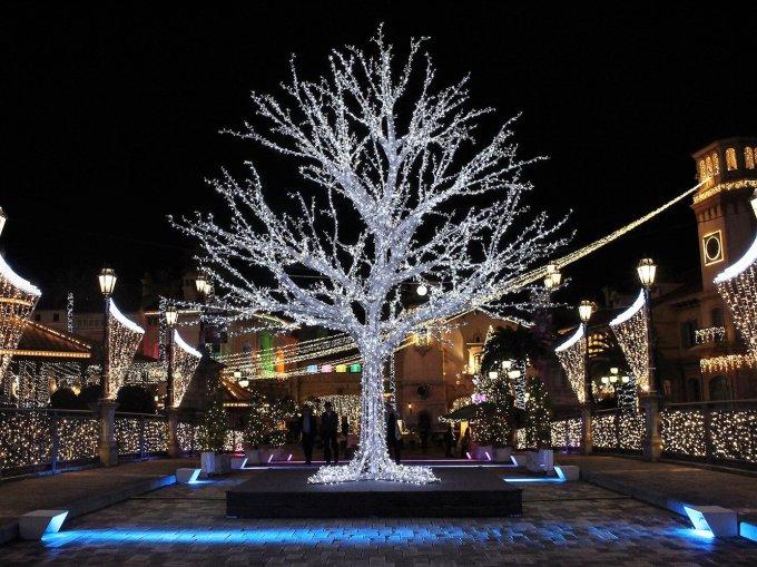 「和歌山 マリーナシティ ポルト ヨーロッパ クリスマス」の画像検索結果