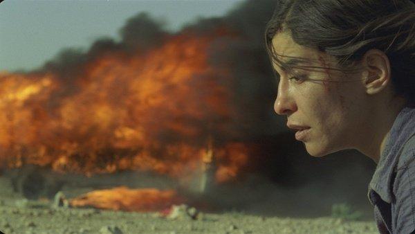 中東的希臘悲劇電影什么時候上映的?-劇情奧秘