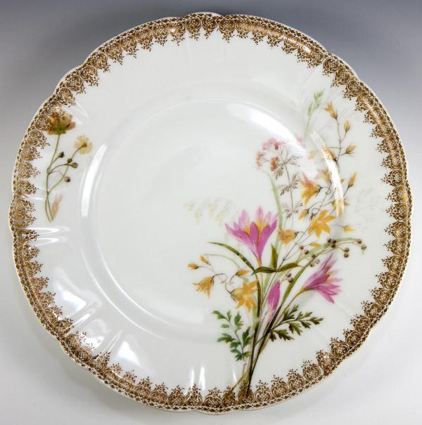 Set Of 9 Hand Painted Haviland Limoges Plates 1888-1896