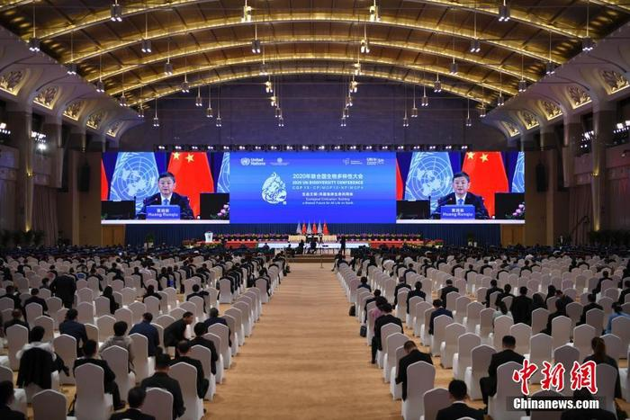 International public opinion: China takes a key step in promoting the Kunming Declaration on the ecological agenda