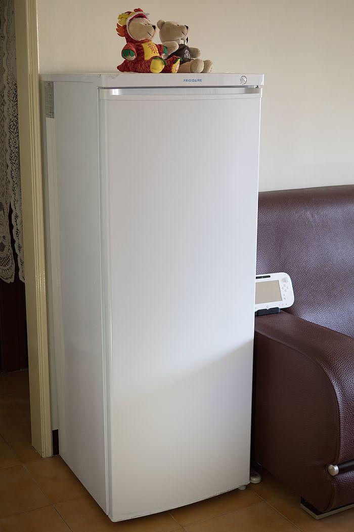 直立式冷凍櫃