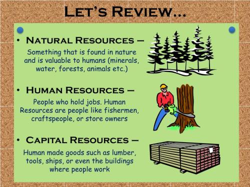 small resolution of Human Natural Capital Resources Worksheet   Printable Worksheets and  Activities for Teachers