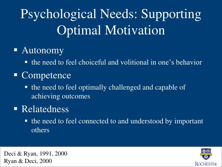 PPT  SelfDetermination Theory in Practice PowerPoint