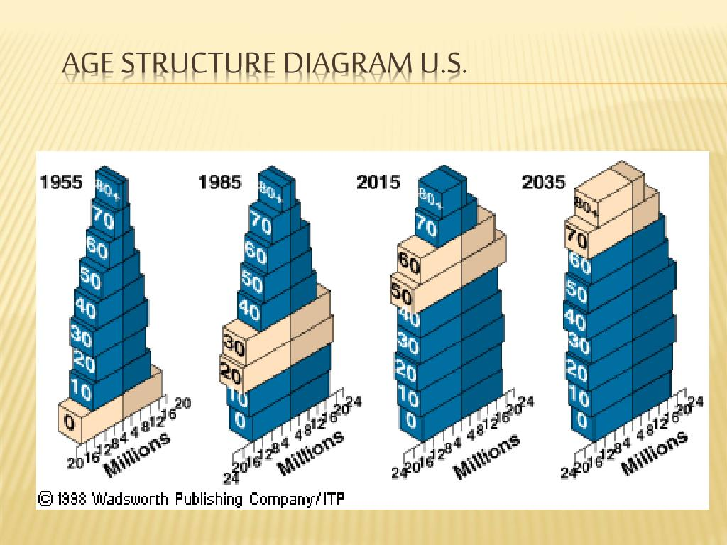 hight resolution of age structure diagram u s