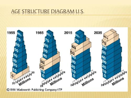 small resolution of age structure diagram u s
