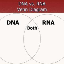 Venn Diagram Comparing Dna And Rna Ford Wiring For Radio Ppt Nucleic Acids Vs Powerpoint Presentation Id 1721365